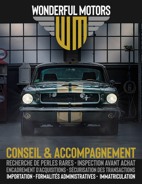 Wonderful Motors